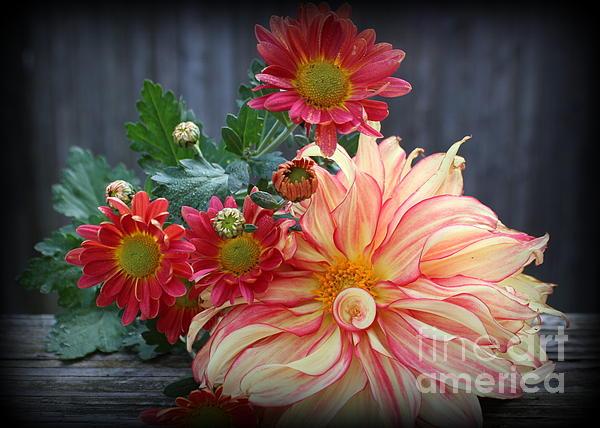 Dora Sofia Caputo Photographic Art and Design - November  Flowers - Still Life