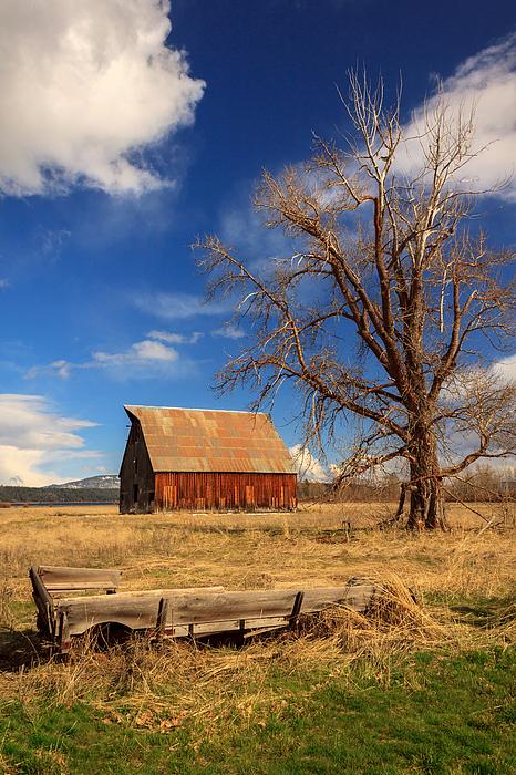 James Eddy - Old Barn And Wagon