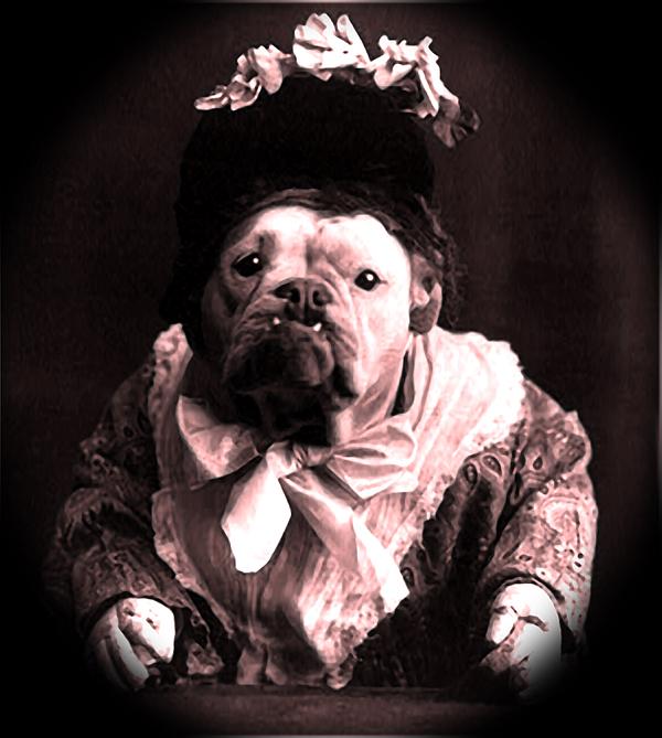 Old Lady English Bulldog Print by Tisha McGee