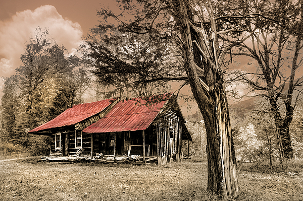 Old Mountain Cabin Print by Debra and Dave Vanderlaan