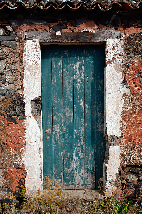 Old Painted Door Print by Gaspar Avila