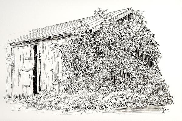 Old Shed Print by Deborah Dallinga