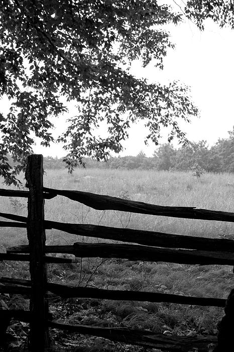 Old Sturbridge Fence In Black And White Print by Belinda Dodd