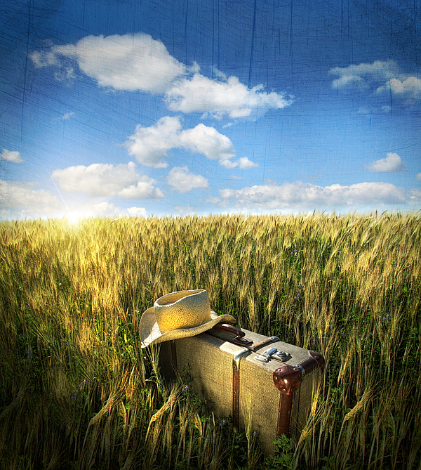 Old Suitcase With Straw Hat In Field Print by Sandra Cunningham