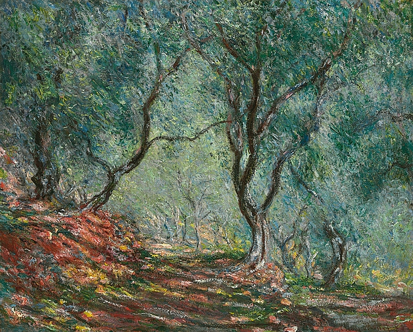 Olive Trees In The Moreno Garden Print by Claude Monet