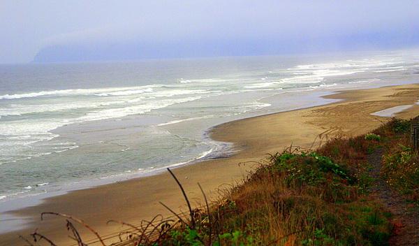 Oregon Coast 3 Print by Marty Koch