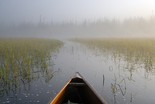 Paddling Into The Fog Print by Larry Ricker