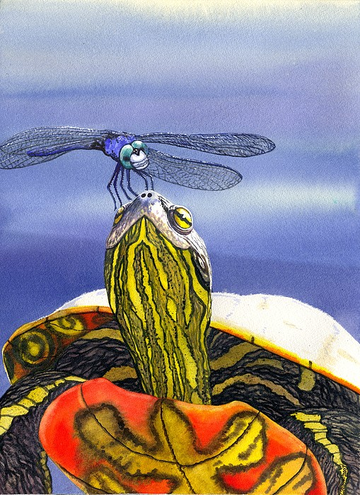 Catherine G McElroy - Painted Turtle and Dragonfly