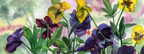 Pansy Field Print by Lynne Reichhart