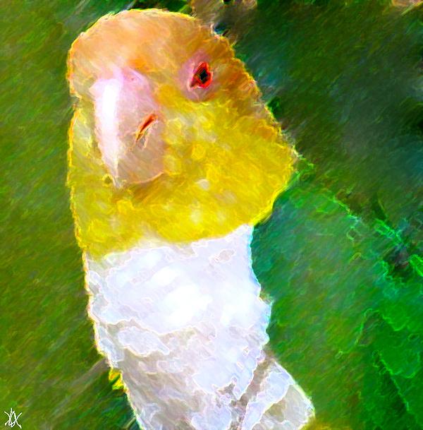 Parrot Grace Print by Debra     Vatalaro