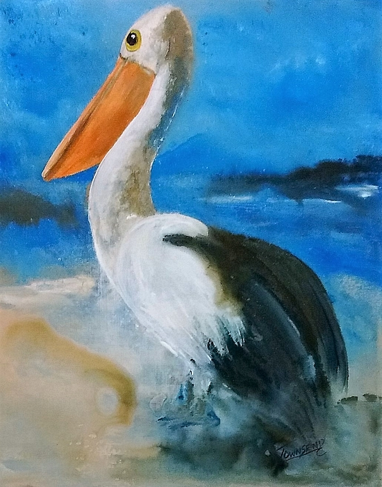 Connie Townsend - Pelican Drip