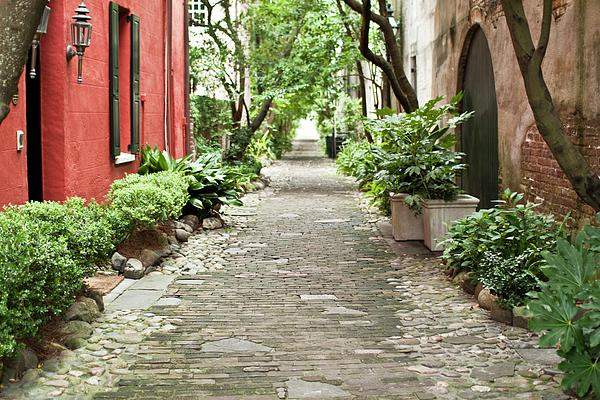 Philadelphia Alley Charleston Pathway Print by Dustin K Ryan