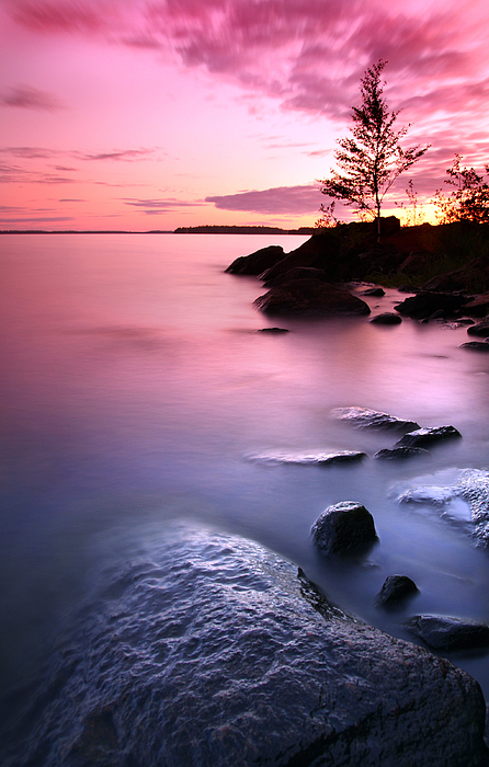 Sandra Rugina - Pink sunset on Finnish lake