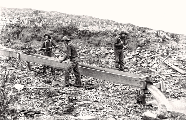 Placer Gold Mining C. 1889 Print by Daniel Hagerman