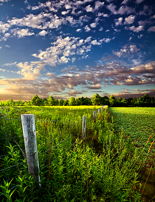 Poems Prayers And Promises Print by Phil Koch