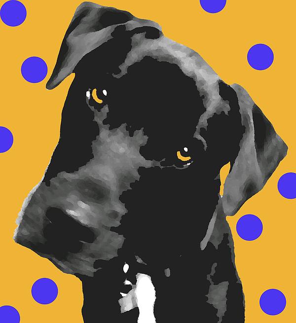 Polka Dot Print by Amanda Barcon