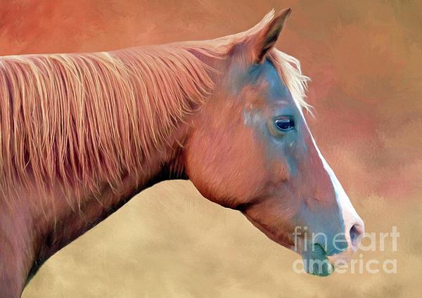 Marion Johnson - Portrait of a Horse