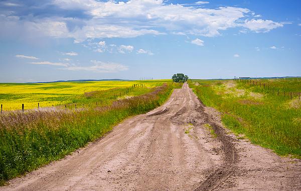 Prairie Poetry - Prairie Road