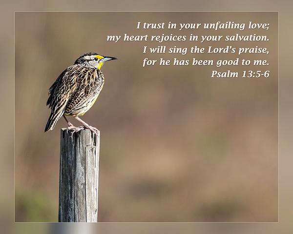 Dawn Currie - Psalm 13 5-6