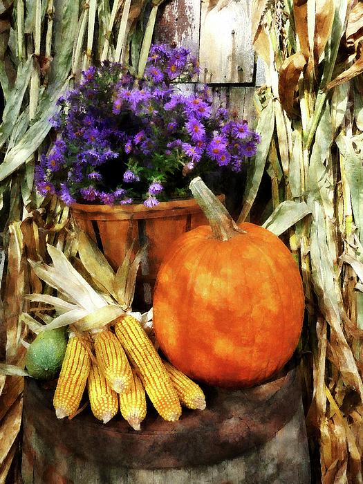 Pumpkin Corn And Asters Print by Susan Savad