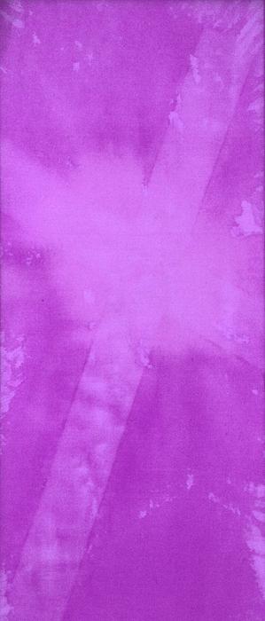 Purple Cross Print by Brandi Webster