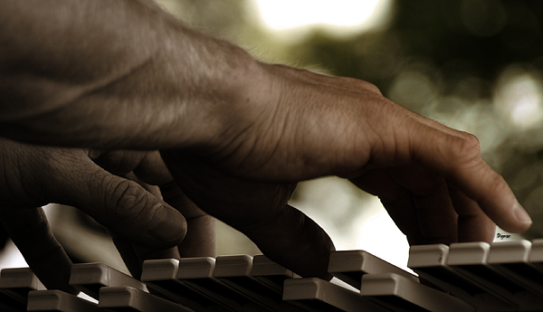 Steven  Digman - Pushing Sound