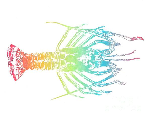 Rainbow Lobster by Jennifer Capo