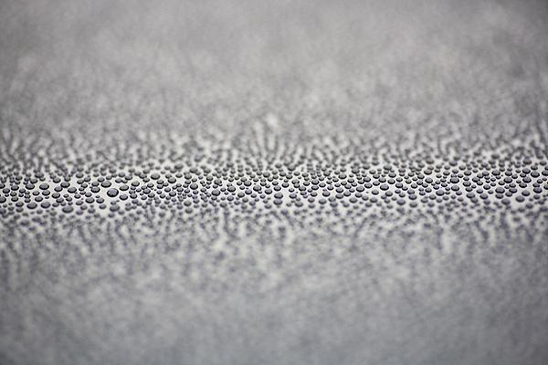 Raindrops Print by Frank Tschakert