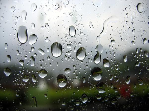 Rainy Day Print by Yali Shi