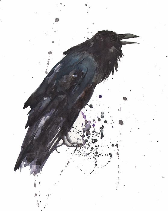 Raven  Black Bird Gothic Art Print by Alison Fennell