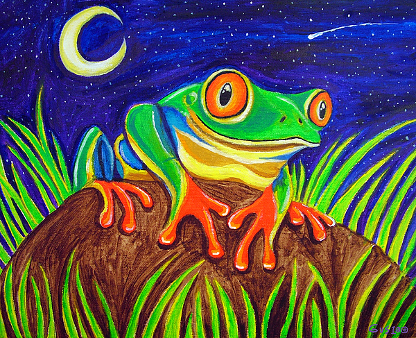 Red-eyed Tree Frog And Starry Night Print by Nick Gustafson