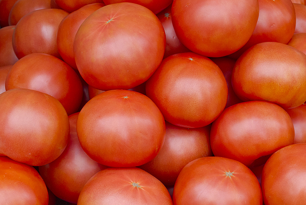 Red Ripe Tomatoes Print by John Trax