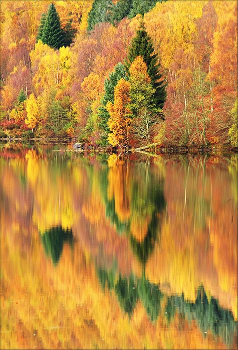Reflections Loch Tummel Scotland Print by George Hodlin