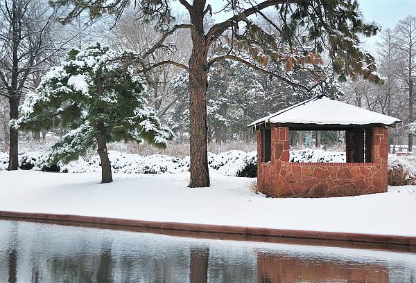 Reflections Of Winter Print by Betty LaRue