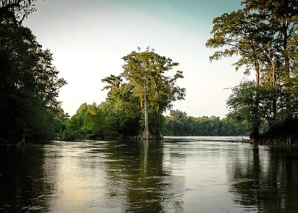Debra Forand - River Cutoff 2