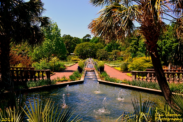 Riverbanks Zoo And Botanical Gardens By Lisa Wooten