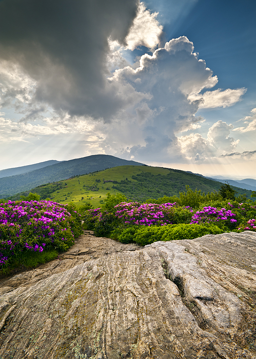 Roan Mountain Rays- Blue Ridge Mountains Landscape Wnc Print by Dave Allen