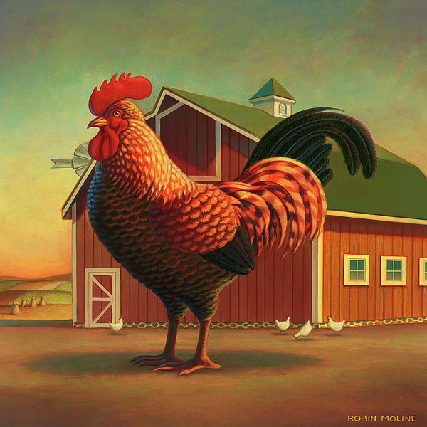 Rooster And The Barn Print by Robin Moline