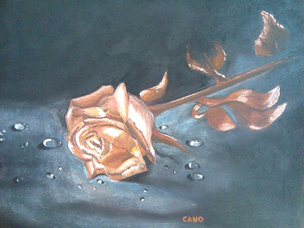 Rose Of Time Print by Rosa Mari Cano Membrado