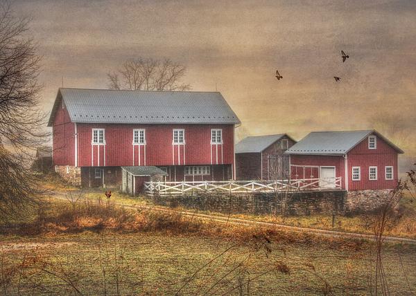 Route 419 Barn Print by Lori Deiter