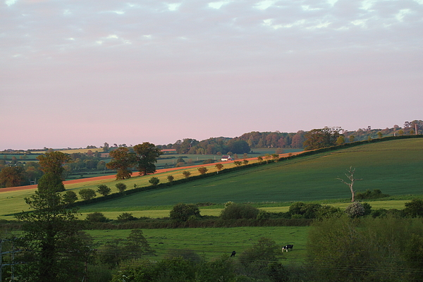 Rumyana Whitcher - Rural England