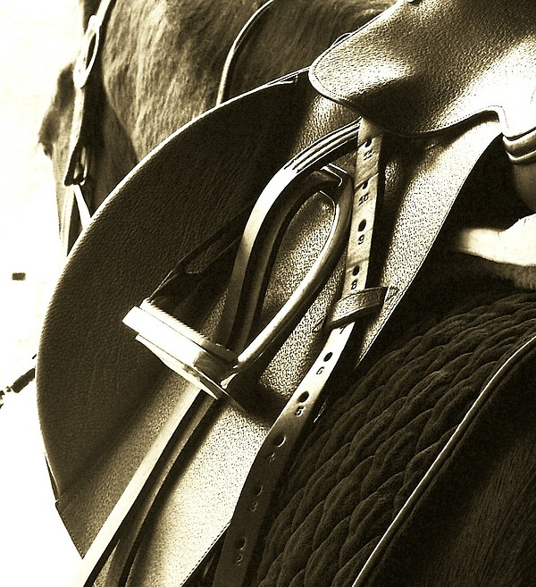 Saddle Up Print by Donna Thomas