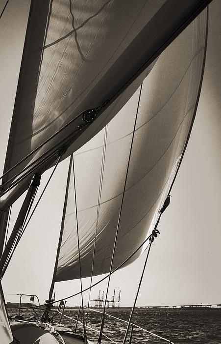 Sailing Beneteau 49 Sloop Print by Dustin K Ryan