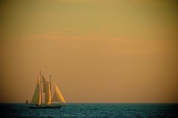 Sails Print by Sebastian Musial
