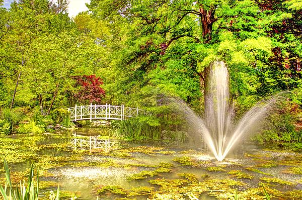 Sayen Gardens Hamilton New Jersey By Geraldine Scull