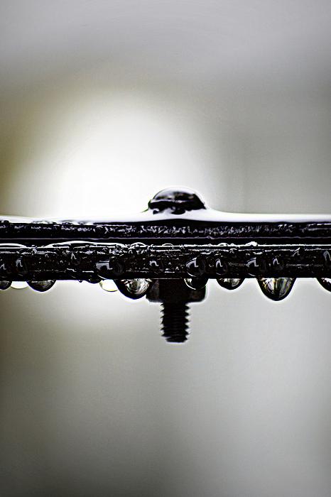 Screw This Rain Print by Lisa Knechtel