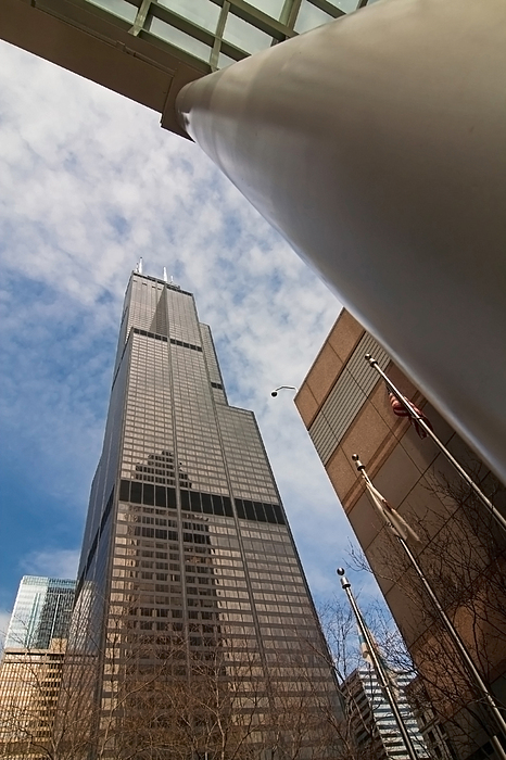 Sears Tower From Across The Street Print by Sven Brogren