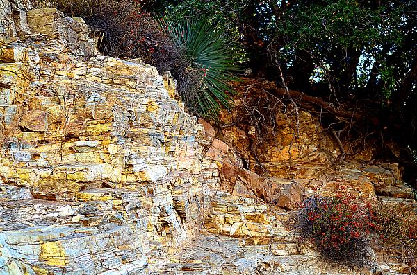 Adrian Vajiac - Sedimentary Rock