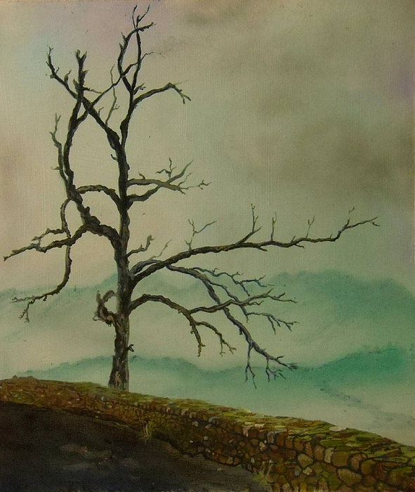 Sentinel Of The Shenandoah Print by Nicole Angell