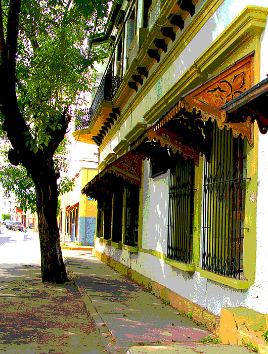 Shady Street By Darian Day Print by Olden Mexico